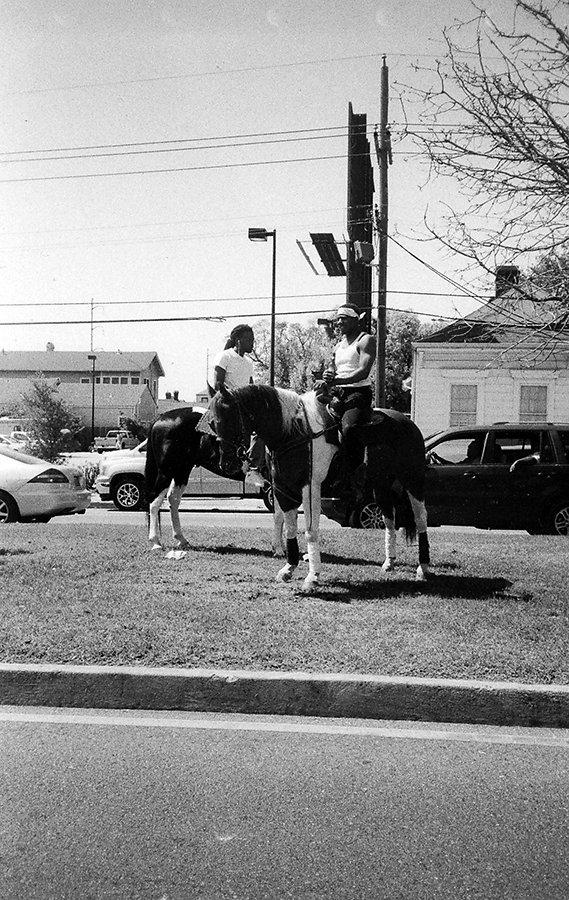 second-line-horse-pair4site.jpg